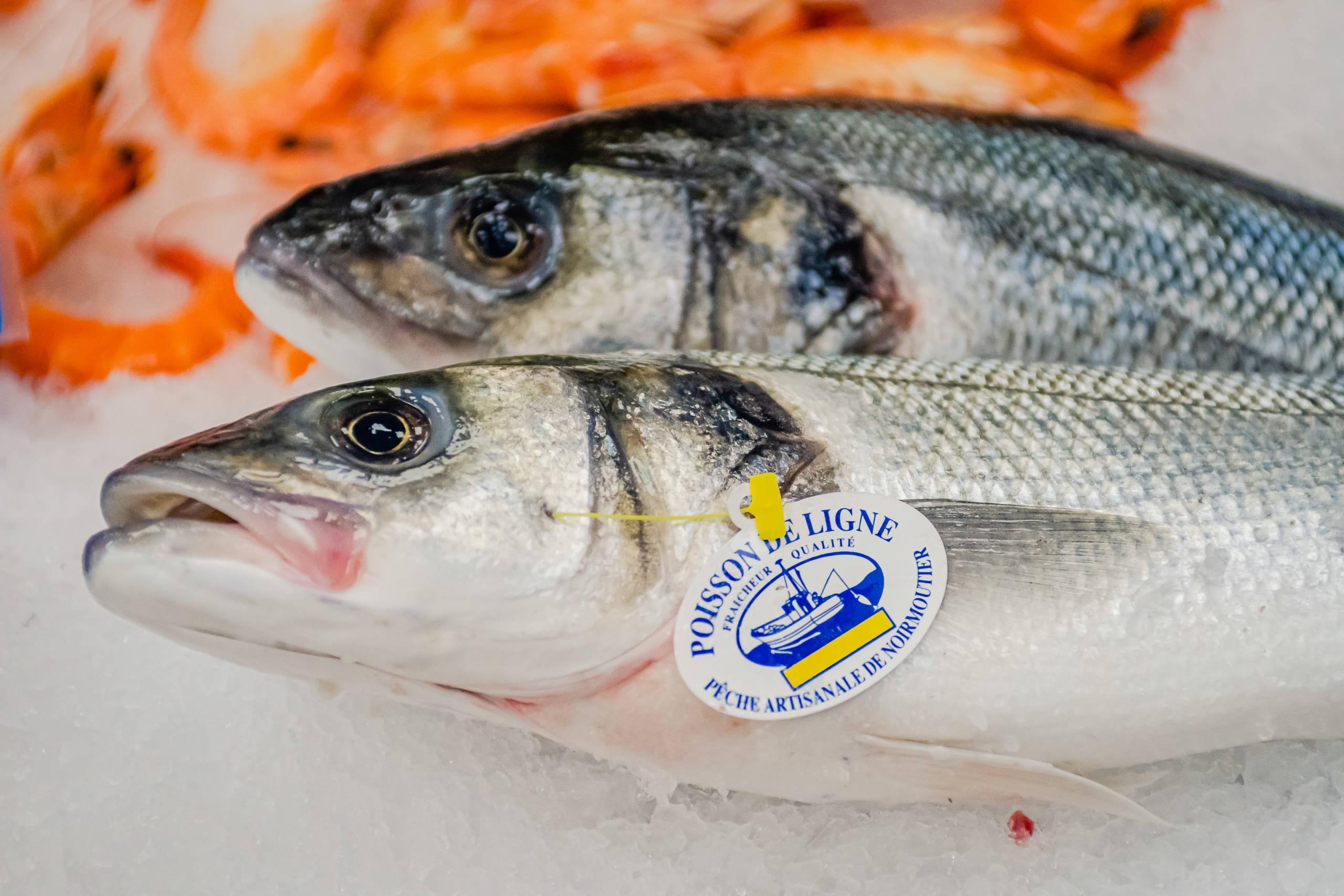 poisson frais et de ligne - poissonnerie messine
